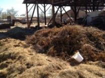 Granja Para Manana compost pile