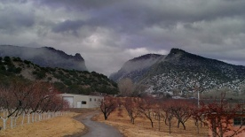 The orchard (and apple shed) in winter. Photo credit: Louisa Martinez