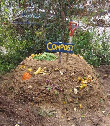Image credit: http://www.dolphinblue.com/blog/how-to-start-your-own-compost-pile/