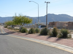 Guerilla median in Albuquerque. Photo credit: David Cristiani