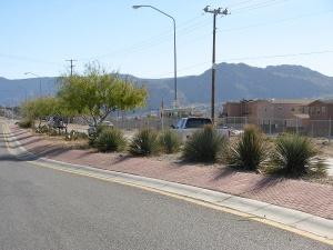 Guerilla median in Albuquerque. Photo credit: David Cristiani