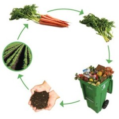Image credit: http://www.uaex.edu/yard-garden/vegetables/compost.aspx