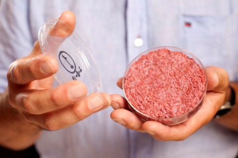 cultured meat burger