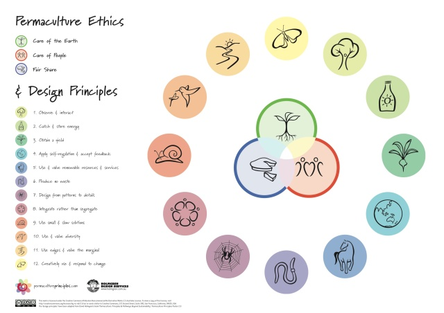 (1)permaculture-principles-poster