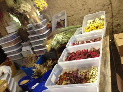 Various boxes full of dried flowers