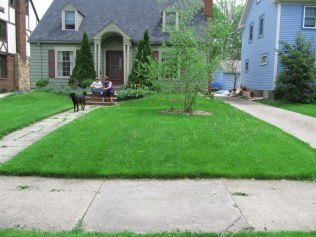 Before the Cleveland Food not Lawns project: http://foodnotlawnsinternational.blogspot.com/search/label/lawns