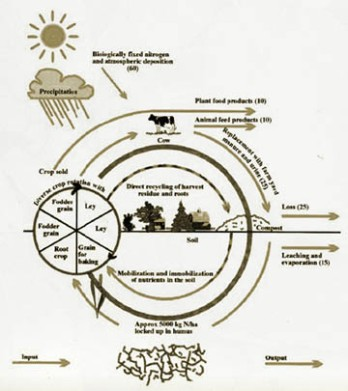 biodiagram2_sm