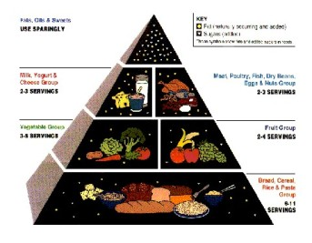 1992 USDA Food Pyramid. Image from: https://www.cnpp.usda.gov/FGP