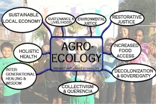 "For each negative circumstance surrounding an intentionally built ""Empty Lot,"" envision the positive outcome in the respective position of intentionally building something using agroecology. Graphics developed by the author"
